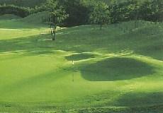 ザ・ダイナミックゴルフ倶楽部