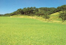 唐沢ゴルフ倶楽部 唐沢コース