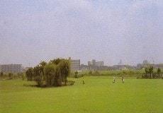 川口市浮間ゴルフ場