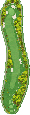 IN Hole11