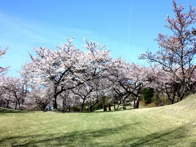 宮島志和カンツリー倶楽部(広島県)