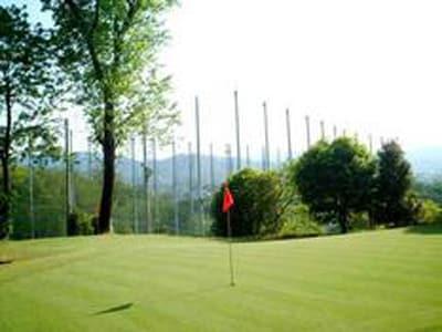 ダイナスティゴルフ