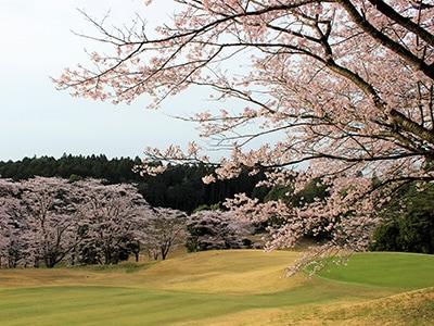 桜の宮ゴルフ倶楽部(茨城県)